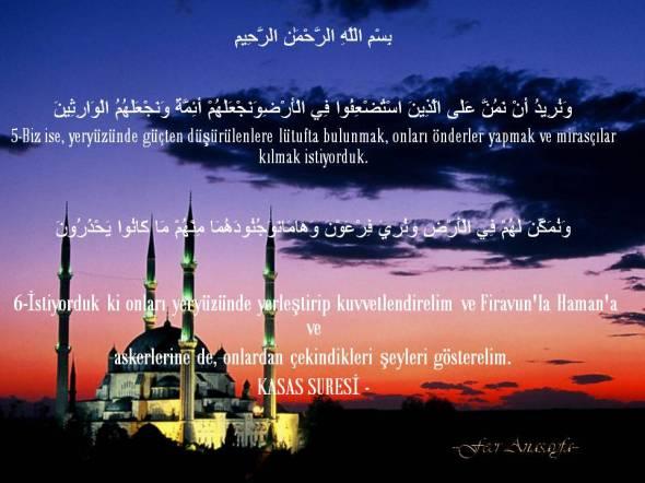 Fecr Anasayfa--